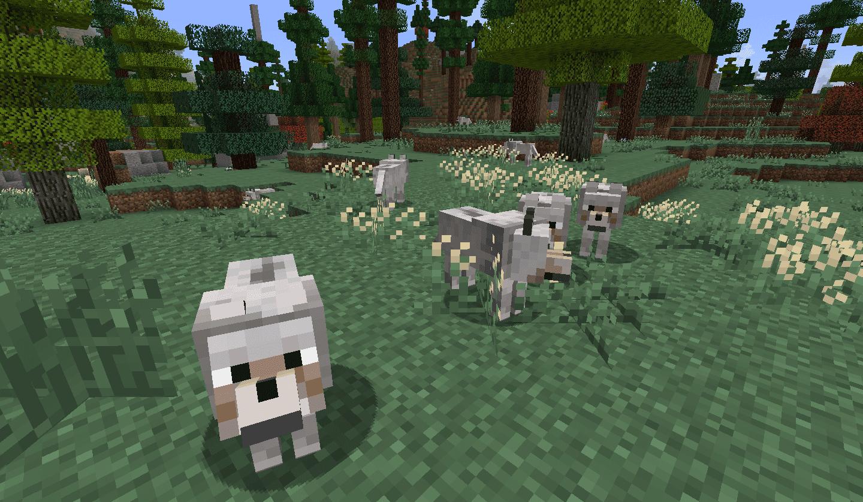 Поиск волка в Майнкрафт