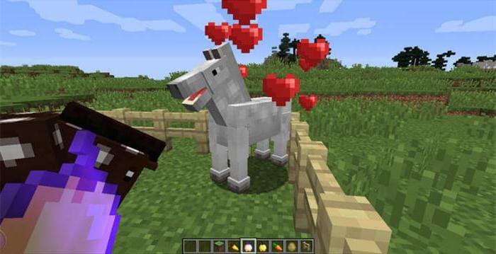 Процесс приручения лошади в Майнкрафте