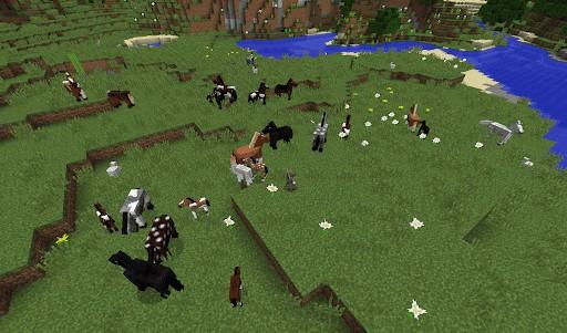 Виды лошадей в игре Minecraft