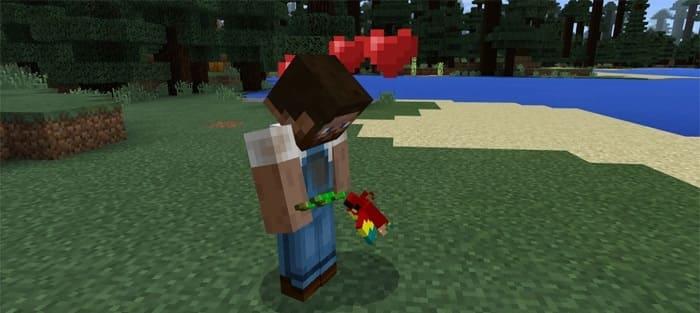 Любовь попугая Minecraft