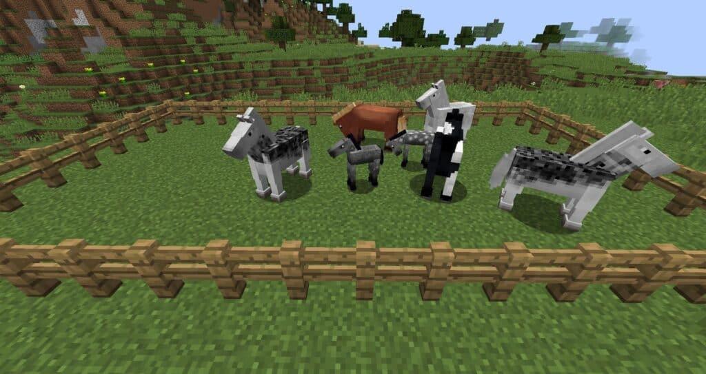 Разводим лошадей в Майнкрафте
