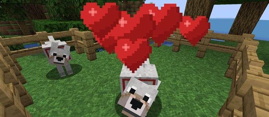 Волк прирученный в Minecraft