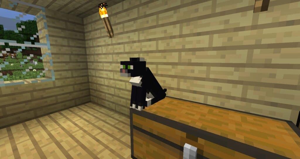 Кошка сидит в доме у игрока Майнкрафт