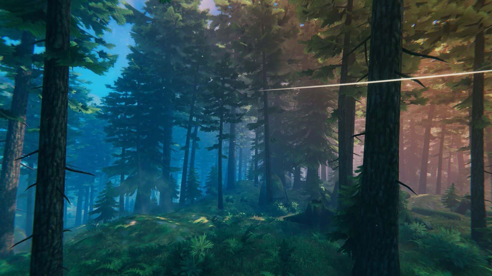 Черный лес Valheim гайд