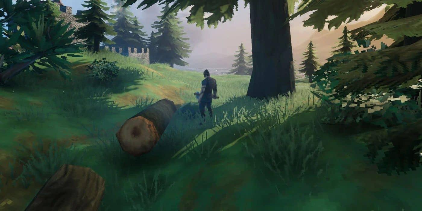 Деревья в черном лесу Вальхейм