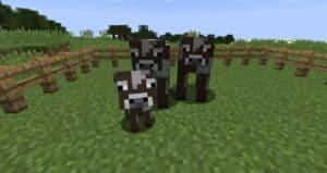 Коровы майнкрафт гайд