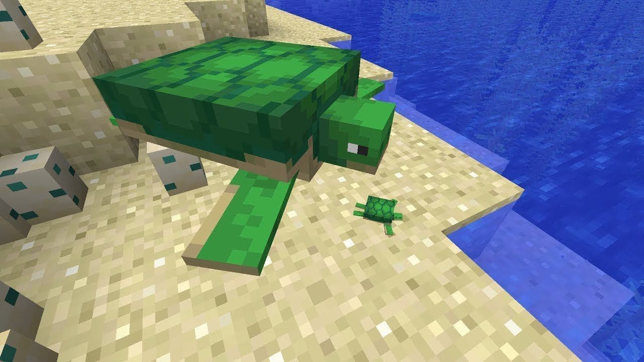 Как приручить черепаху Майнкрафт