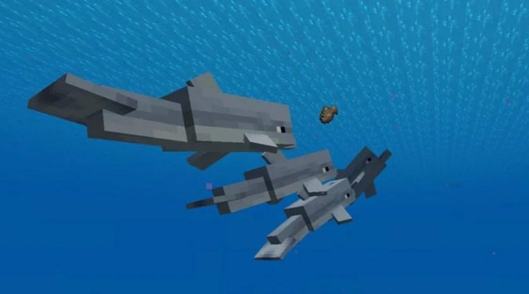 Дельфины Minecraft секреты и советы