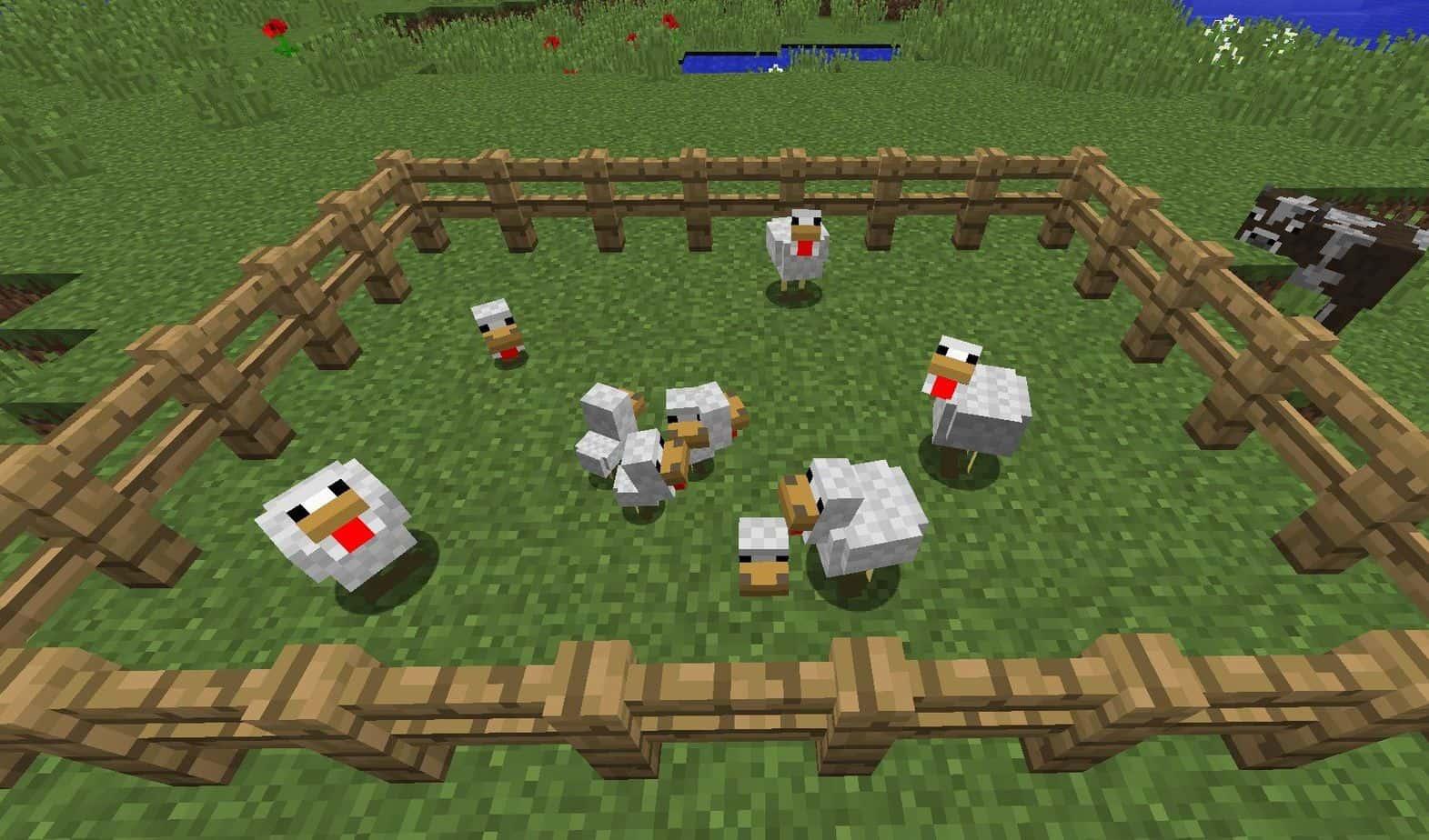 Секреты и советы курицы Minecraft