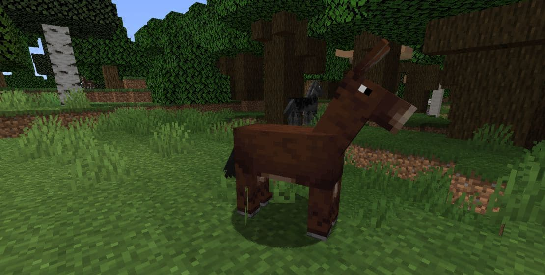 Мулы и овцы Майнкрафт
