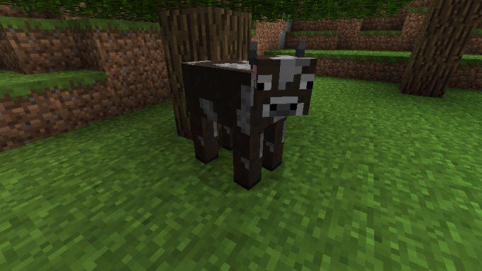 Корова в Майнкрафт: как приручить, доить, что едят