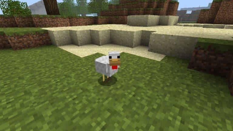 Курица в Майнкрафт: как сделать, что едят, чем кормить?