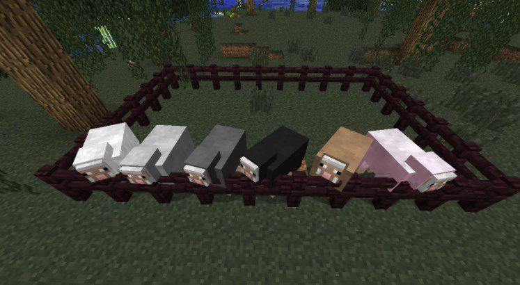Овцы в игре Майнкрафт