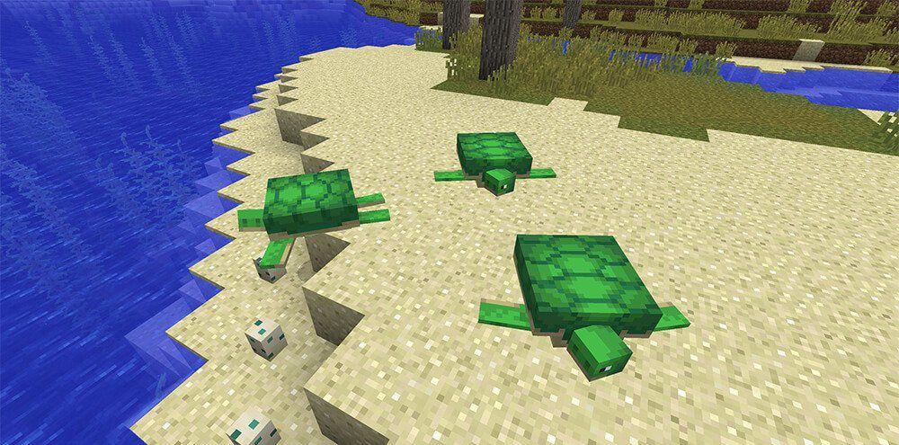 Потомство черепахи Майнкрафт