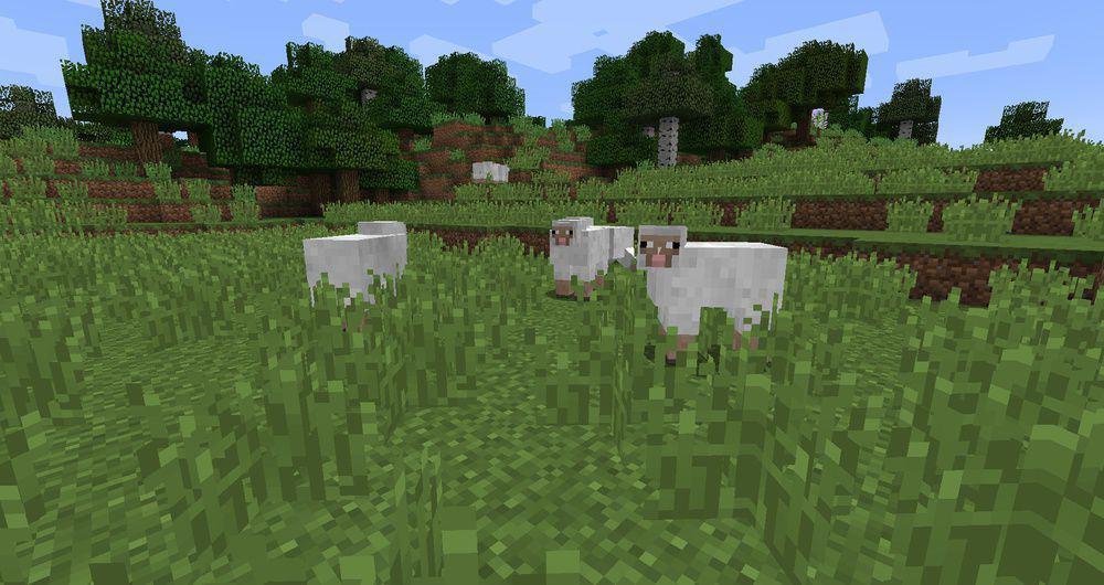 Поведение овец Майнкрафт
