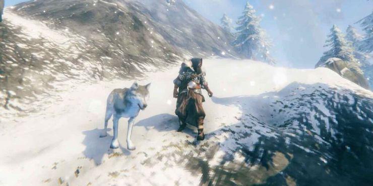 Где найти волка в Valheim