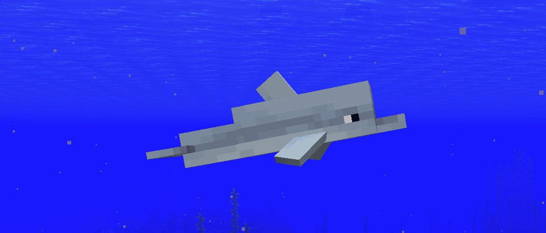 Дельфин в игре Майнкрафт гайд