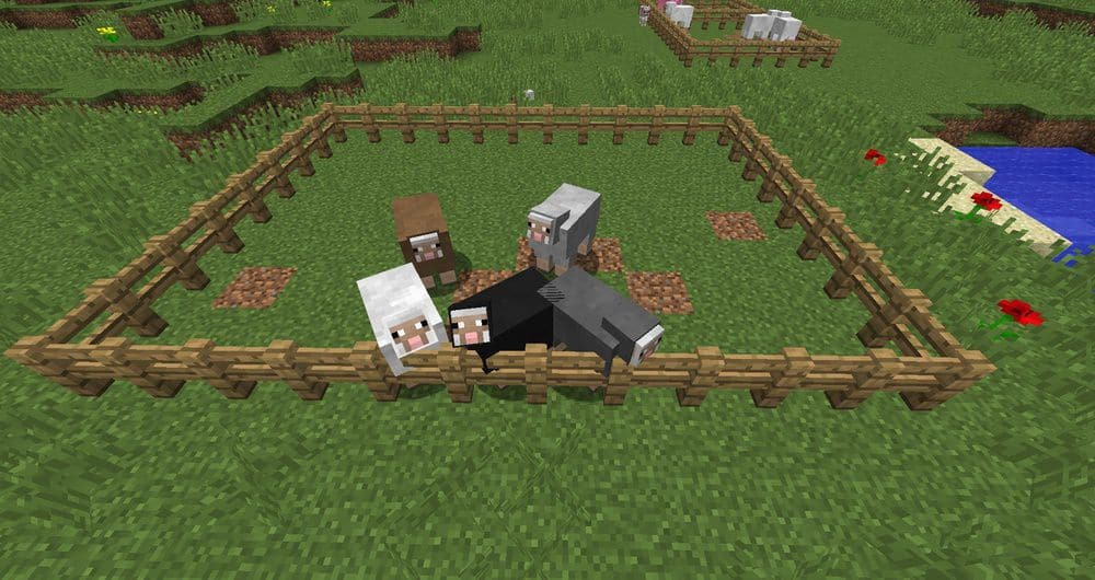 Где спавнятся овцы Майнкрафт