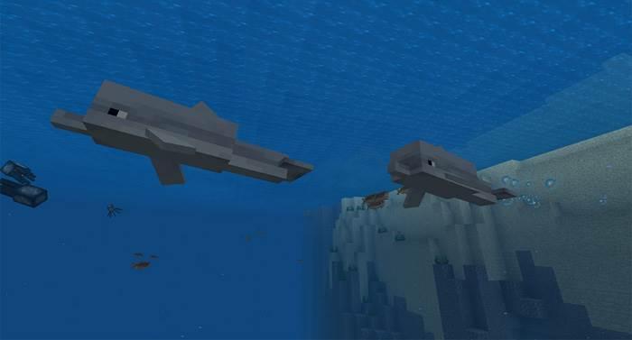 Спаун дельфинов в майнкрафте