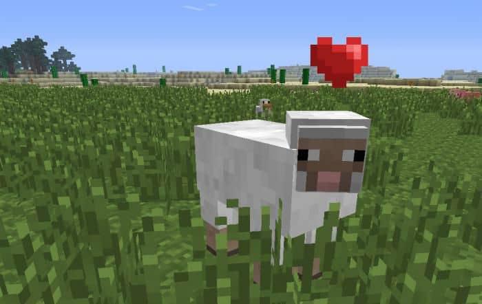 Как сделать овцу в Майнкрафте