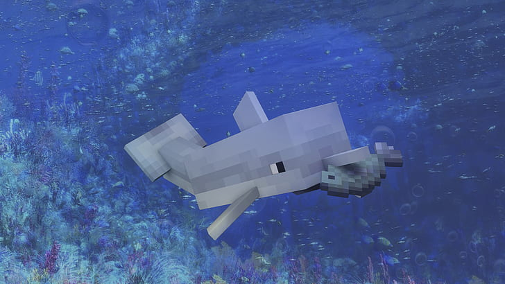 Чем питаются дельфины Майнкрафт