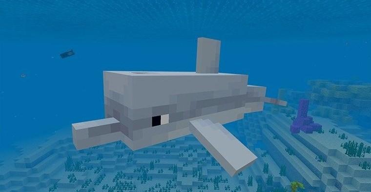 Дроп дельфина майнкрафт
