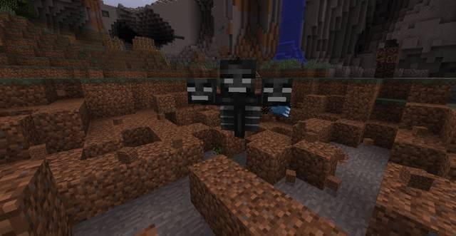 Спаун иссушителя Minecraft
