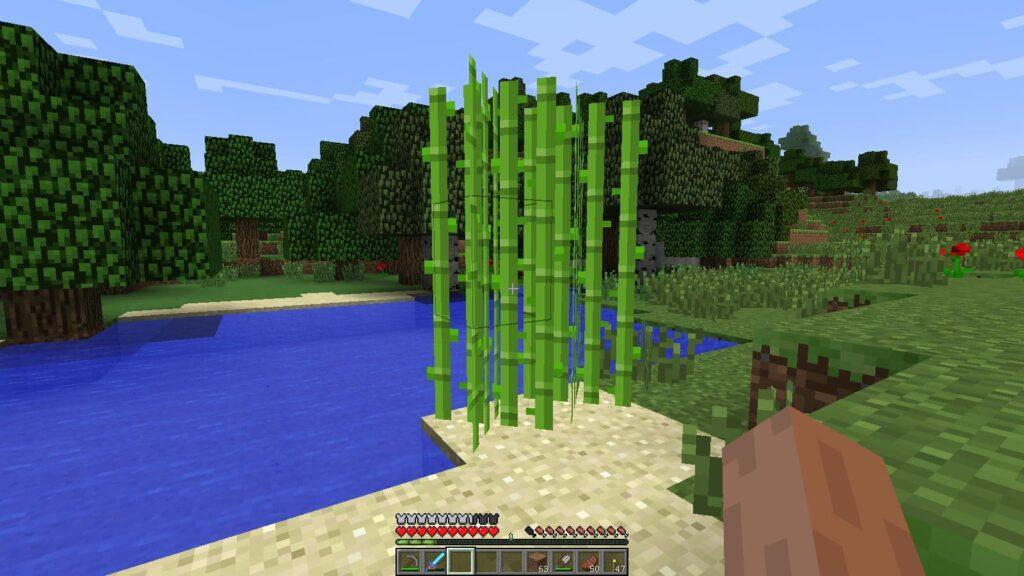 Тростник в Minecraft гайд