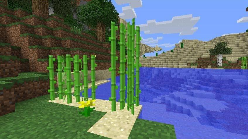 Где найти сахарный тростник Майнкрафт